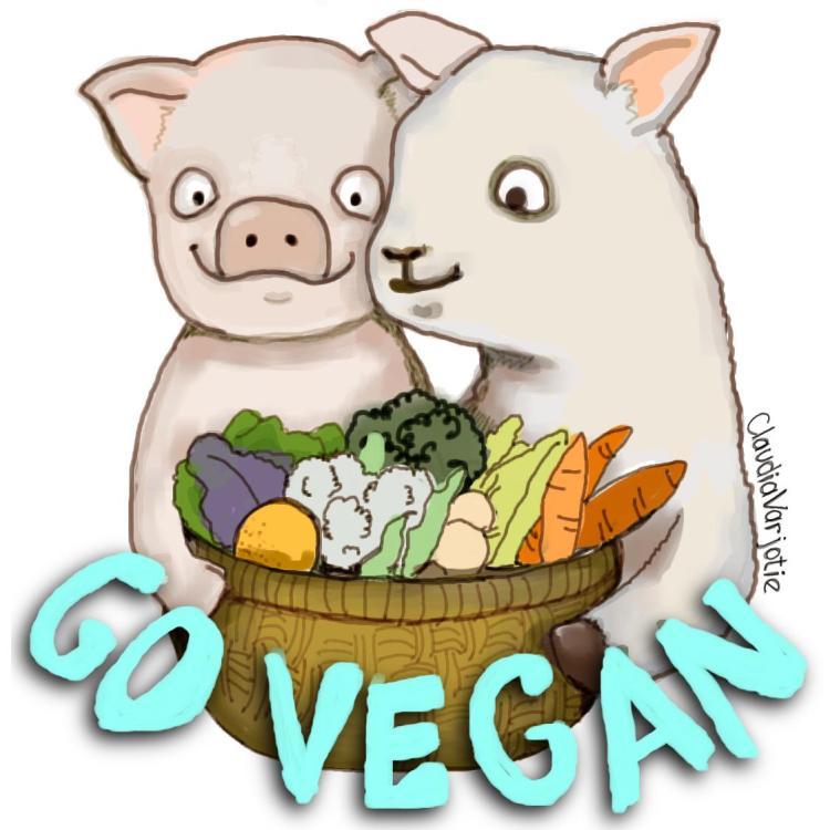 raw vegan life2