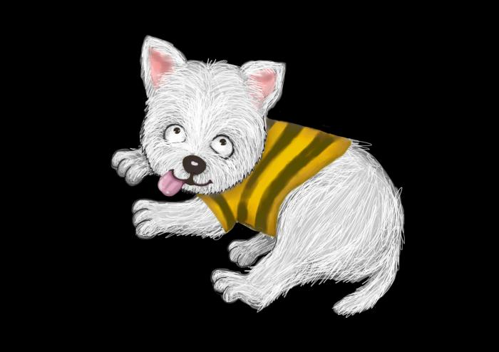 westminster highland terrier