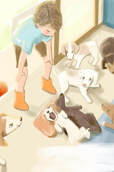 Illustration 13 no text